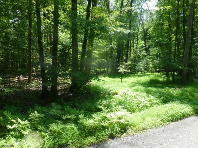 0 Mountain Rd, East Amwell Twp., NJ 08525 (MLS #3572395) :: Weichert Realtors