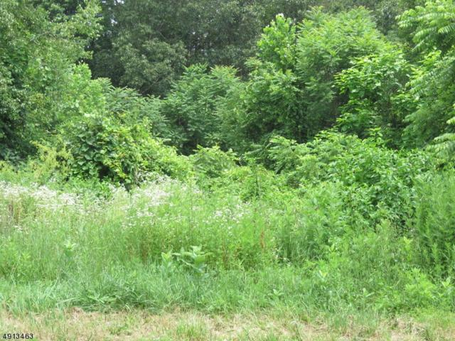120 Riverview Way, Montague Twp., NJ 07827 (MLS #3572495) :: Weichert Realtors
