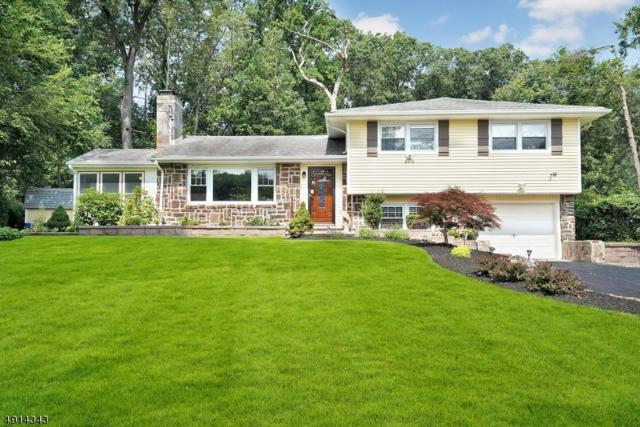 47 Morning Glory Rd, Warren Twp., NJ 07059 (MLS #3572599) :: The Sue Adler Team