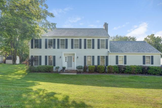 24 Center Grove Rd, Randolph Twp., NJ 07869 (MLS #3572766) :: The Sue Adler Team