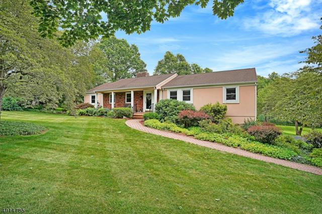 51 Rolling Hill Dr, Long Hill Twp., NJ 07946 (MLS #3572933) :: The Debbie Woerner Team