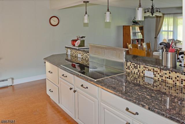 53 Davis Rd, Frankford Twp., NJ 07826 (MLS #3572972) :: Coldwell Banker Residential Brokerage