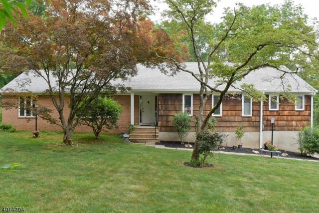 23 Birch Dr, Bernards Twp., NJ 07920 (#3573028) :: Jason Freeby Group at Keller Williams Real Estate