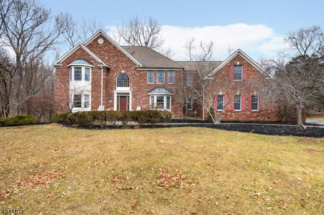 18 Oakridge Rd, Clinton Twp., NJ 08801 (MLS #3573092) :: Mary K. Sheeran Team