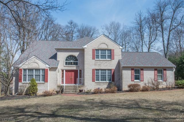 9 Farragut Rd, Randolph Twp., NJ 07869 (MLS #3573109) :: The Sue Adler Team