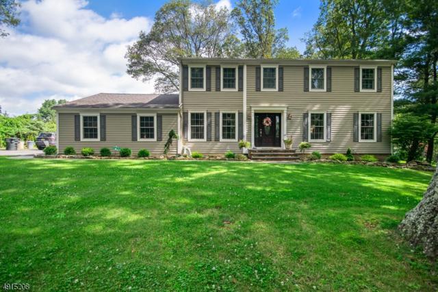 16 Apgar Rd, Washington Twp., NJ 07853 (MLS #3573338) :: Zebaida Group at Keller Williams Realty