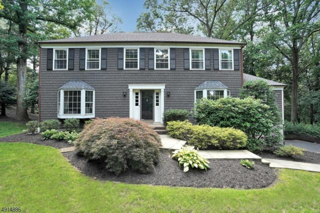 2 Jodi Ln, Chatham Twp., NJ 07928 (MLS #3573411) :: Weichert Realtors