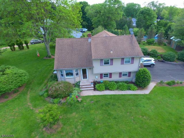 116 Hammler Rd, Hillsborough Twp., NJ 08844 (MLS #3573520) :: SR Real Estate Group