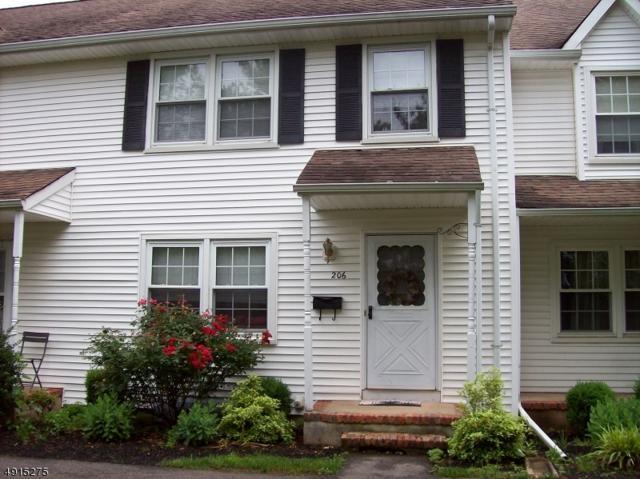 206 Columbia Common, Hillsborough Twp., NJ 08844 (MLS #3573532) :: The Sue Adler Team