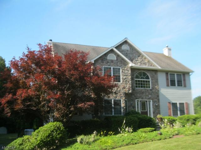 5 Martingale Dr, Wantage Twp., NJ 07461 (#3573756) :: Daunno Realty Services, LLC