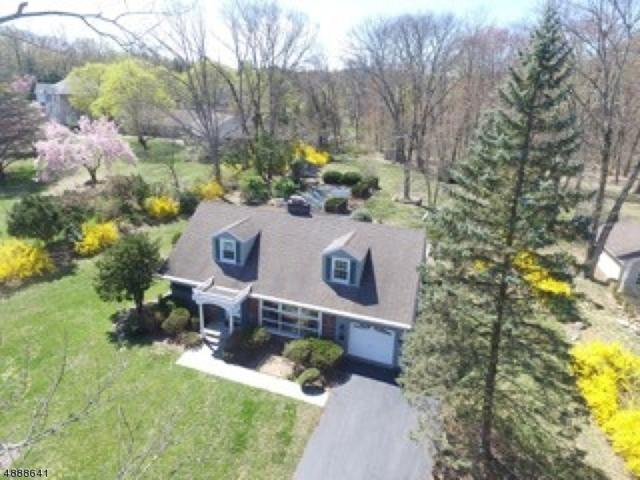 346 Sunset Rd, Pequannock Twp., NJ 07444 (MLS #3573799) :: Pina Nazario