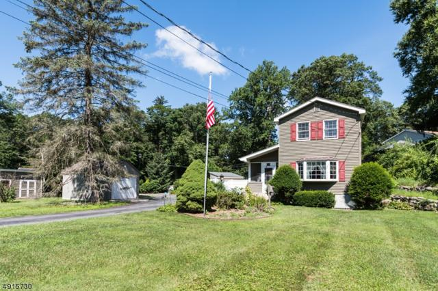 53 3RD ST, Mount Olive Twp., NJ 07828 (MLS #3573844) :: Pina Nazario