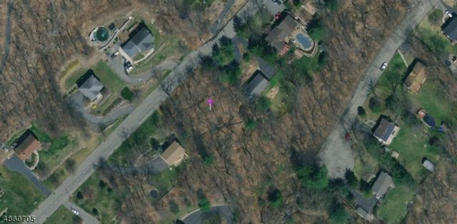 0 Paderewski Rd Land, Jefferson Twp., NJ 07438 (MLS #3573894) :: The Dekanski Home Selling Team