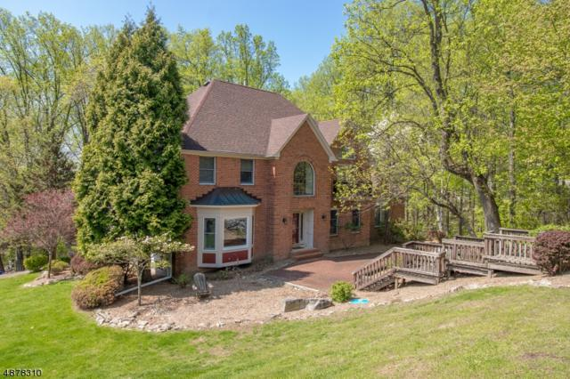 3 Cobblestone Ln, Clinton Twp., NJ 08801 (MLS #3574023) :: Weichert Realtors