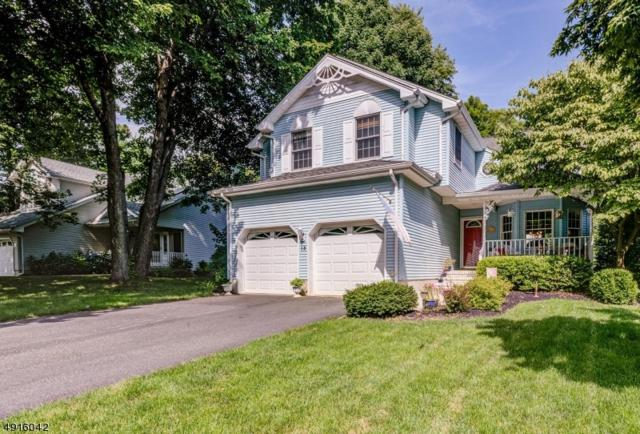 15 Rachel Ct, Clinton Town, NJ 08809 (MLS #3574045) :: Mary K. Sheeran Team
