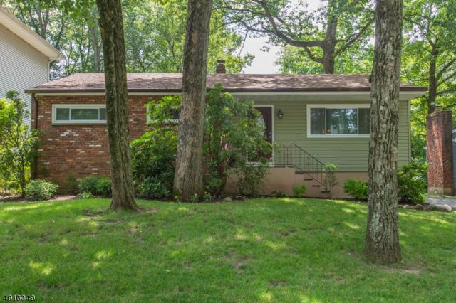 14 Old Middletown Rd, Rockaway Twp., NJ 07866 (MLS #3574057) :: The Dekanski Home Selling Team