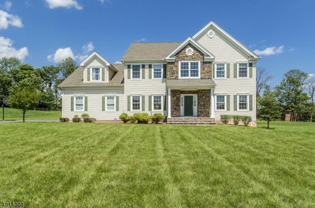 208 Cedar Bridge Ln, Alexandria Twp., NJ 08825 (MLS #3574080) :: SR Real Estate Group
