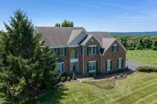 12 Hilltop Rd, Alexandria Twp., NJ 08848 (MLS #3574114) :: SR Real Estate Group