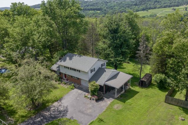 197 Bellis Rd, Holland Twp., NJ 08848 (MLS #3574144) :: SR Real Estate Group