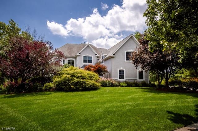 7 Kittansett Ct, Montgomery Twp., NJ 08558 (#3574170) :: Jason Freeby Group at Keller Williams Real Estate