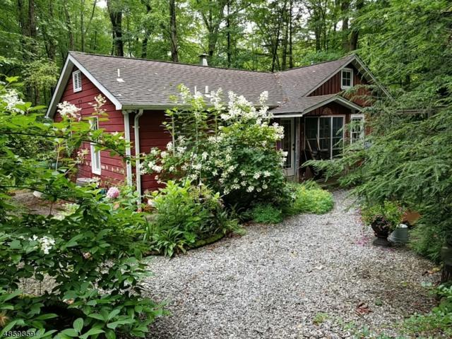 20 The Trl, Hackettstown Town, NJ 07840 (#3574204) :: Daunno Realty Services, LLC