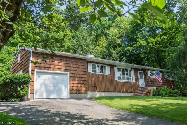 95 Andover Sparta Rd, Andover Twp., NJ 07860 (MLS #3574244) :: The Debbie Woerner Team