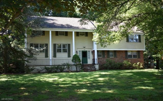 14 Skylark Rd, Springfield Twp., NJ 07081 (#3574288) :: Daunno Realty Services, LLC