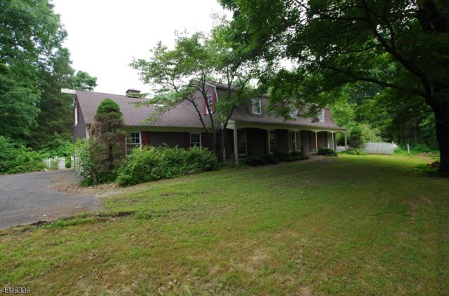 4 Kishpaugh Rd, Blairstown Twp., NJ 07825 (#3574323) :: Daunno Realty Services, LLC