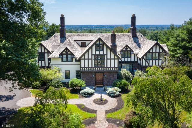 7 Krams Trail, Bridgewater Twp., NJ 08836 (MLS #3574349) :: SR Real Estate Group