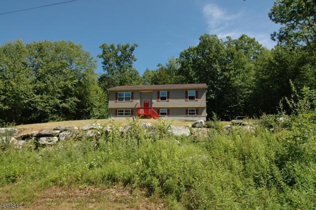 25 Oak Ridge Rd, Montague Twp., NJ 07827 (MLS #3574561) :: Pina Nazario