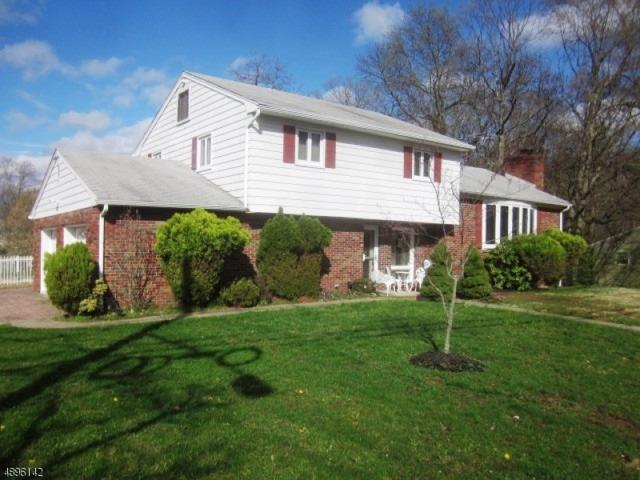 1042 Prospect St, Westfield Town, NJ 07090 (MLS #3574580) :: Pina Nazario
