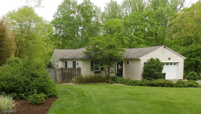 20 South Rd, Randolph Twp., NJ 07945 (MLS #3574834) :: Mary K. Sheeran Team