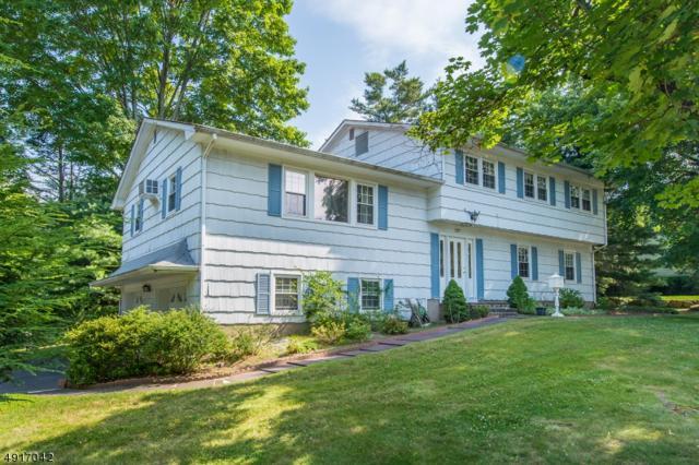 227 Prospect Ave, Park Ridge Boro, NJ 07656 (MLS #3575006) :: Mary K. Sheeran Team