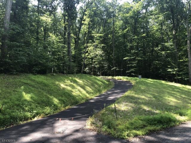 0 Creek Rd, Alexandria Twp., NJ 08825 (MLS #3575031) :: SR Real Estate Group