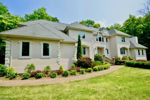 220 Ridge Rd, Jefferson Twp., NJ 07438 (MLS #3575135) :: Pina Nazario