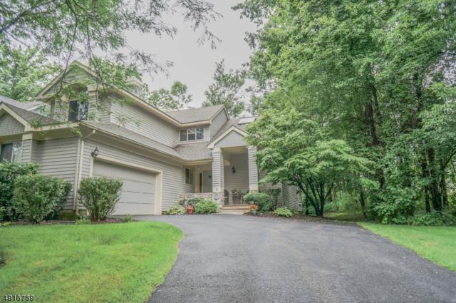 4 Tannery Hill Dr, Hardyston Twp., NJ 07419 (MLS #3575145) :: SR Real Estate Group