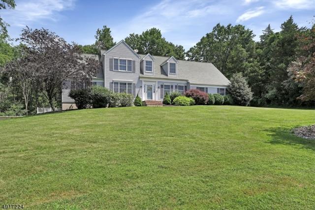 18 Ramshorn Rd, Alexandria Twp., NJ 08848 (MLS #3575174) :: SR Real Estate Group