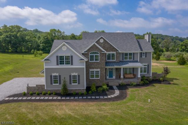 1 Severns Way, Delaware Twp., NJ 08559 (MLS #3575250) :: Team Francesco/Christie's International Real Estate