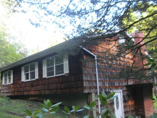 925 Middleville Rd, Stillwater Twp., NJ 07860 (MLS #3575686) :: Mary K. Sheeran Team