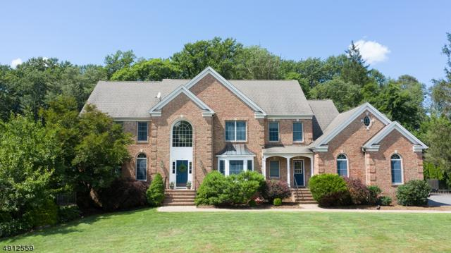 10 Lake Cherokee Dr, Randolph Twp., NJ 07869 (MLS #3575895) :: Mary K. Sheeran Team
