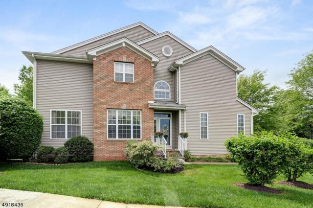 14 Coolidge Way, Montgomery Twp., NJ 08540 (MLS #3576325) :: Pina Nazario