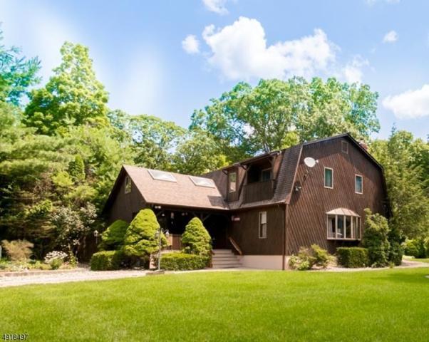 146 Schoolhouse Rd, Jefferson Twp., NJ 07438 (MLS #3576375) :: The Dekanski Home Selling Team
