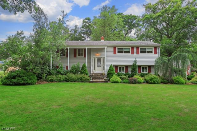159 Briarwood Drive East, Berkeley Heights Twp., NJ 07922 (#3576767) :: The Force Group, Keller Williams Realty East Monmouth