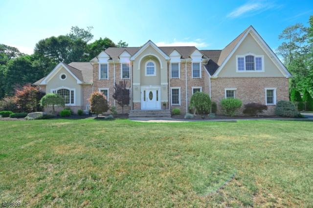 3 Lola Ct, Jefferson Twp., NJ 07438 (MLS #3576785) :: The Dekanski Home Selling Team
