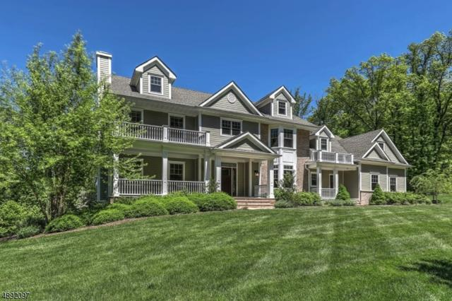 10 Waterfall Dr, Randolph Twp., NJ 07945 (MLS #3577248) :: Mary K. Sheeran Team