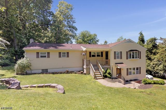 10 Lakeview Dr, Green Twp., NJ 07821 (MLS #3577333) :: Mary K. Sheeran Team
