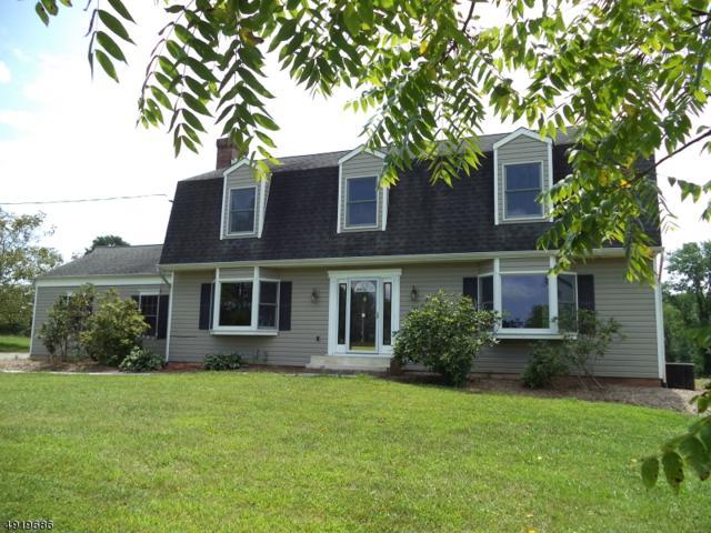 22 Senator Stout Rd, Alexandria Twp., NJ 08867 (MLS #3577654) :: SR Real Estate Group