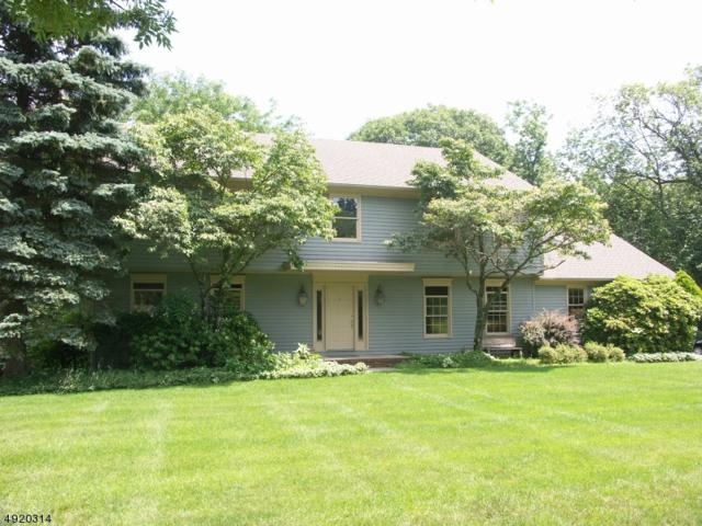 32 Copeland Rd, Denville Twp., NJ 07834 (MLS #3578044) :: Coldwell Banker Residential Brokerage