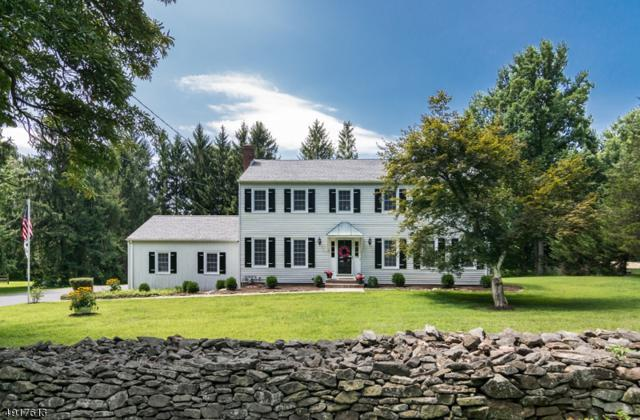 104 Pleasant Hill Rd, Randolph Twp., NJ 07869 (MLS #3578464) :: Mary K. Sheeran Team