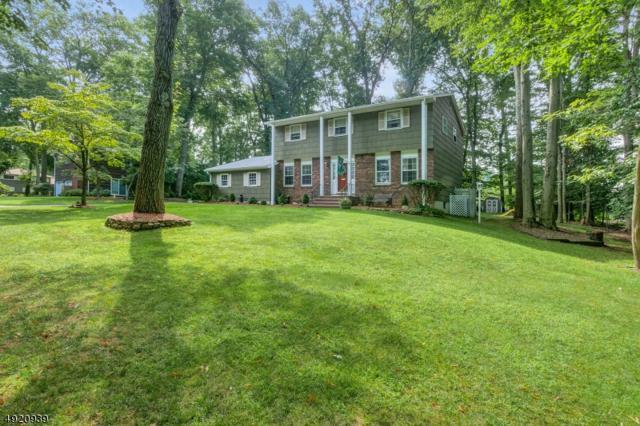 2 Whitegate Rd, Roxbury Twp., NJ 07876 (MLS #3578583) :: SR Real Estate Group